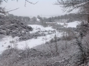 Smeeth Sandpit with snow