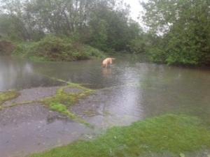 Smeeth Sandpit flooded